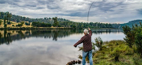 Featured image Books Basic Fishing A Beginners Guide - Books