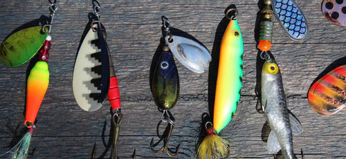 Featured image Things That Must Be in Your Tackle Box Bait - Things That Must Be in Your Tackle Box